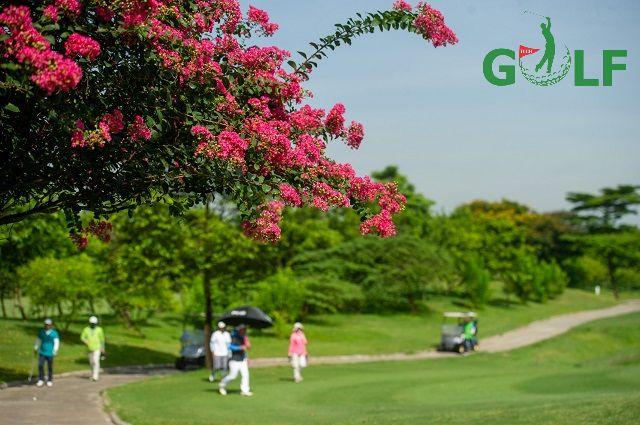 Sân golf hòa hợp với thiên nhiên