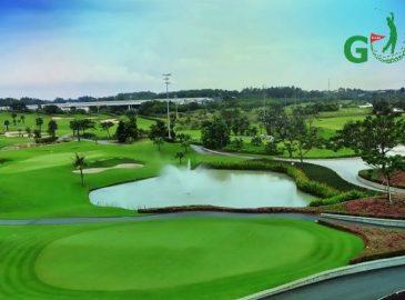 Sân golf Twin Doves (Phú Mỹ)